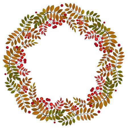 Autumn wreath with rowan berries and leaves. Vector illustration Stock Illustratie
