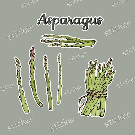 A bunch and sprigs of asparagus in the form of insulated stickers. Vector illustration