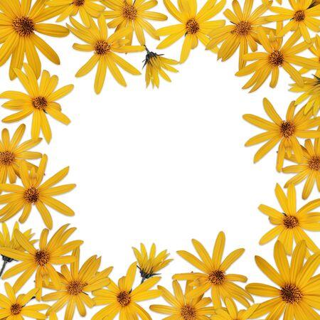 Square frame with yellow Jerusalem artichoke flowers