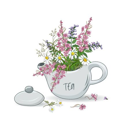 Kettle with a bouquet of wildflowers daisies, fireweed, oregano. Healthy herbal tea. Vector