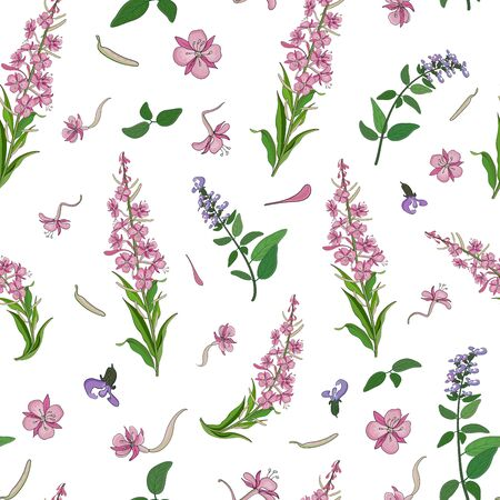 Seamless pattern with pink blooming sally flowers and basil flowers. Vector