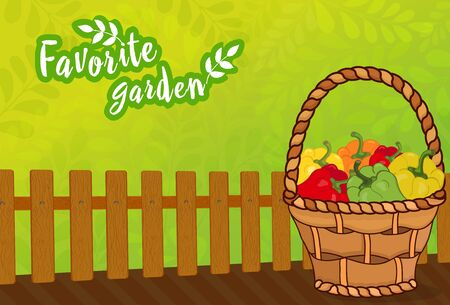 Green background for a garden with a wooden fence and a crop of peppers in a wicker basket. Vector illustration