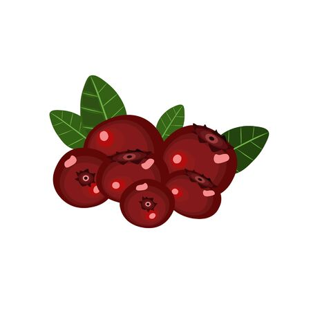 Fresh red huckleberries with green leaves isolated
