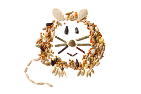 Cute and funny rodent made of rodent`s feed