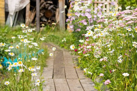 gangway: Country cottage area with gangway in sunny day Stock Photo