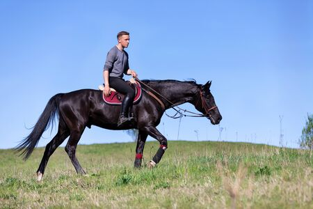 Beautiful man riding a horse on field at summer