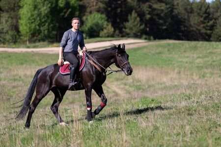 Beautiful man riding a horse on field at summer Stockfoto