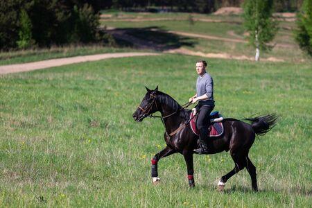 Beautiful man riding a horse on field at summer Foto de archivo
