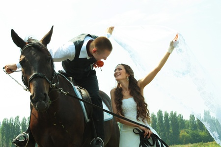 horse love horse kiss animal love: Happy wedding couple.