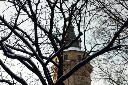 building feature: Tower through the branches of tree against sky