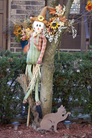 Thanksgiving decoration of scarecrow and cat in the autumn garden  photo