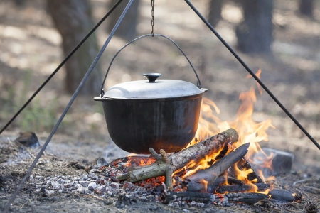 food chain: Cooking in the forest  Stock Photo