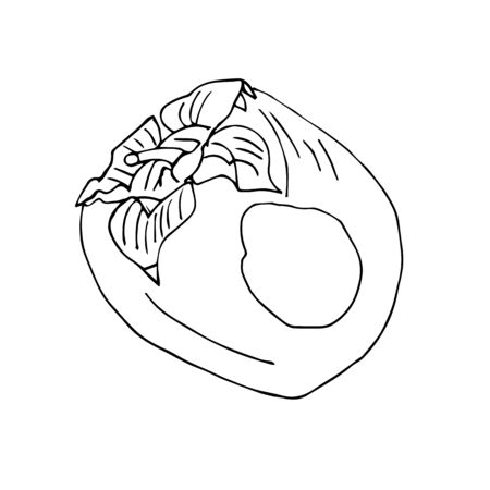 Contour Sketch of persimmon , fruit on a white background