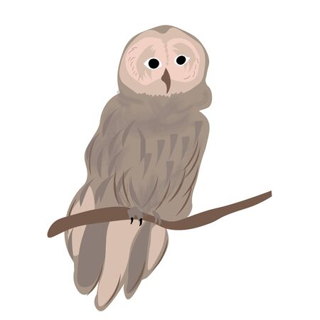 Offended, angry walking owl on a white background Illustration