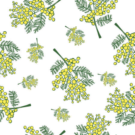 seamless pattern with spring delicate flowers - yellow mimosa on a white background