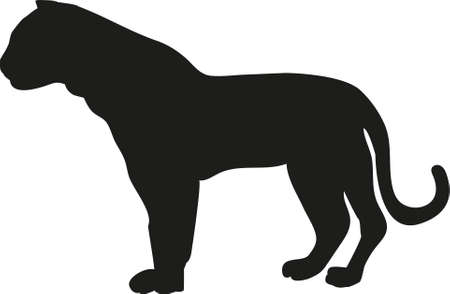 black silhouette of a standing tiger on a white background