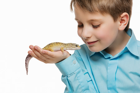 Closeup shot of boy holding pet lizard on his hand. Isolated over white background. Stock Photo
