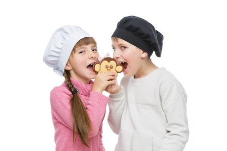 poquito: Beautiful boy and girl in chef hats biting monkey shape christmas cookie. Children standing isolated over white background.