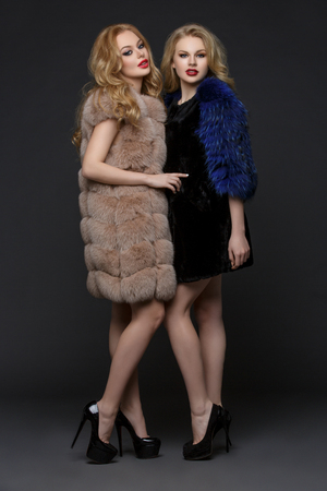 Two beautiful young women with bright makeup and long blond hair standing in fashionable fur coats. High heels. Studio shot over dark background. Stock Photo