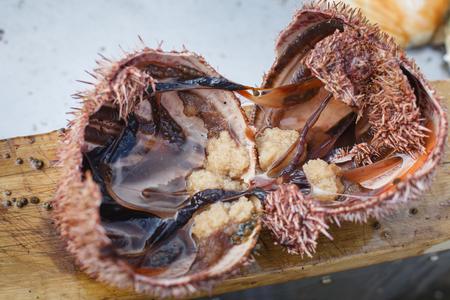 gonads: sea urchin cut in half lying on wood cutting board. outside shot in Norway. copy space.