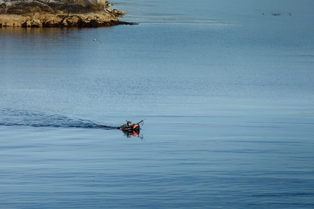 fisher swimming for fish in Northern sea. outdoor shot in Norway. copy space.