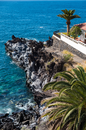 beautiful view on blue ocean water and palm tree. outdoor shot on tenerife island. copy space.