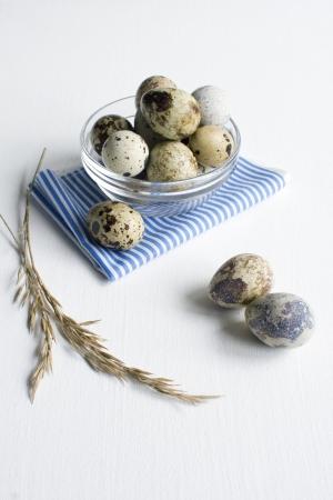 huevos de codorniz: Quial huevos en un bol de cristal