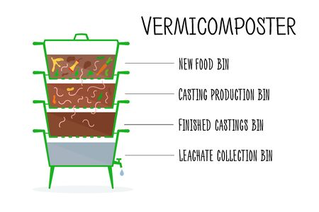 Vector illustration of vermicomposter structure. Concept of recycling, zero waste. Worms compost design. Composting organic waste by earthworms. Иллюстрация