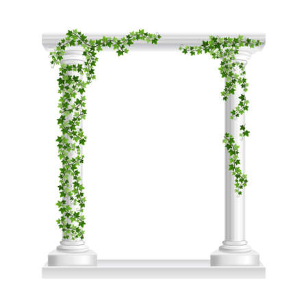 Marble roman arch with columns at green ivy creeper isolated on white background. Temple frame with stone pillars in climbing vine. Realistic 3d vector illustration of crept plants on architecture