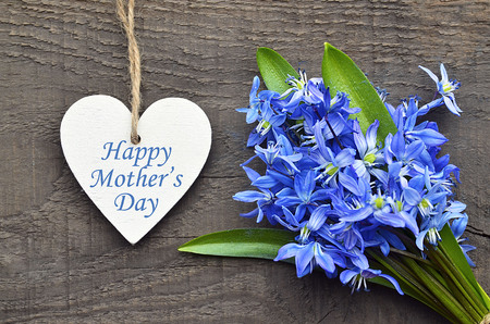 Happy Mothers Day.Blue Scilla flowers and decorative wooden heart on old wooden background.Mothers Day greeting card.Selective focus.