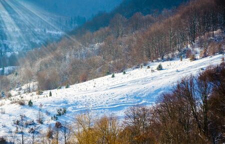 Winter landscape, the tops of the Carpathian mountains under cover of snow,  Stock Photo