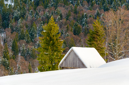 House on a hillside covered with snow and green trees on the sides, with hhory Blue Christmas forest in the background Winter landscape. Stock Photo