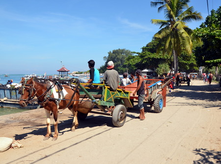 cartage: Cartage on Gili Air, Indonesia. On Gili Islands in Indonesia, there are only cycling and horse-drawn carts