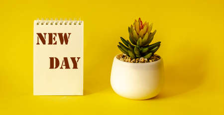 New day text on white notepad, next to pot of flowers on yellow background