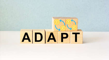 Adapt word from wooden blocks with dollar and euro icons on a light background Archivio Fotografico