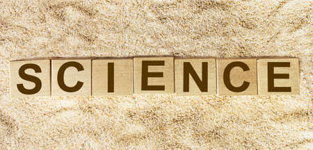 Science word written on wooden block and sand background for your design, concept.