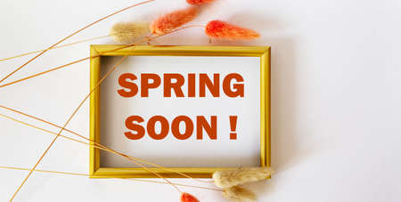 Text Spring Soon, on a white background in a photo frame, framed by multi-colored dried flowers. bright background for the start of the new spring season