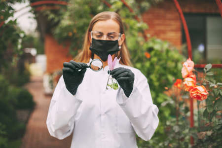 A woman scientist in a white coat, mask and goggles examines a sample of a plant through a magnifying glass during a quality check.