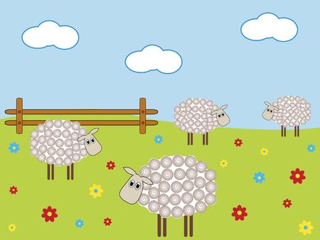 countryside landscape: Sheep