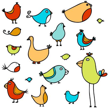 Uccelli divertenti  Archivio Fotografico - 6247832