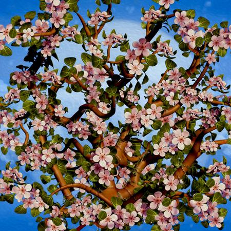 Cherry Tree Blossom Pattern Zdjęcie Seryjne
