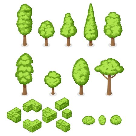 Isometric vector set of park plants, trees and bushes
