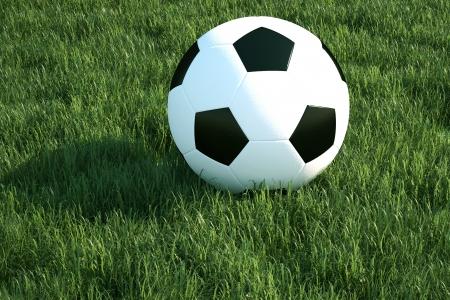 Soccer ball on the grass 版權商用圖片