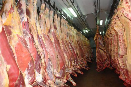 half kanten van het rund vlees in het slacht huis depot  Stockfoto