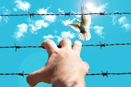 Men hand holding onto the barbed wire on a background of sky photo