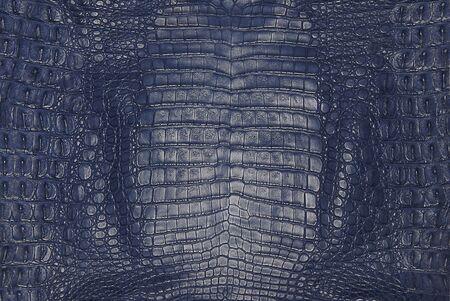 blauwe krokodil huid textuur Stockfoto