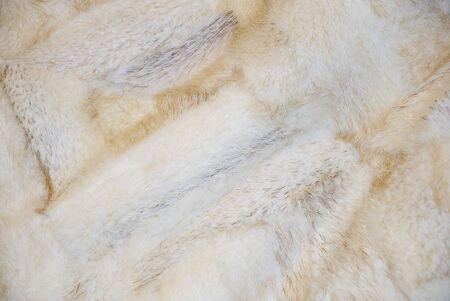 mink: Closeup of a beautiful mink fur background
