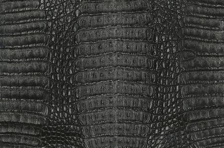 arrière-plan de texture de la peau crocodile