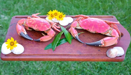 red boiled crabs on wooden plate background photo