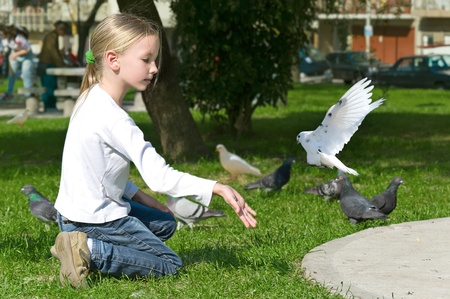 goodness: Happy laughing little girl feeding Pigeons in the park Stock Photo